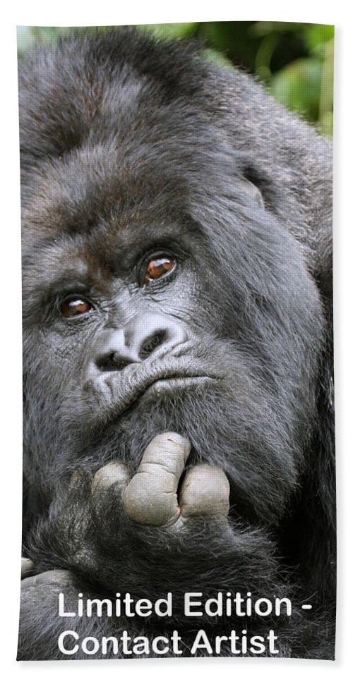 Mountain Gorilla Hand Towel featuring the photograph Guhonda by David Beebe