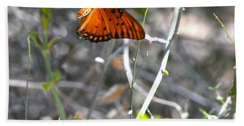Butterfly Bath Towel featuring the photograph Gulf Fritillary Flying by Hella Buchheim