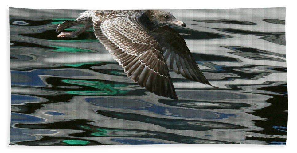 Birds Bath Sheet featuring the photograph Gull Flight by Myrna Bradshaw