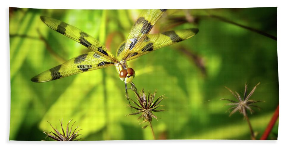 Dragonfly Hand Towel featuring the photograph Halloween Pennant Dragonfly by Mark Andrew Thomas