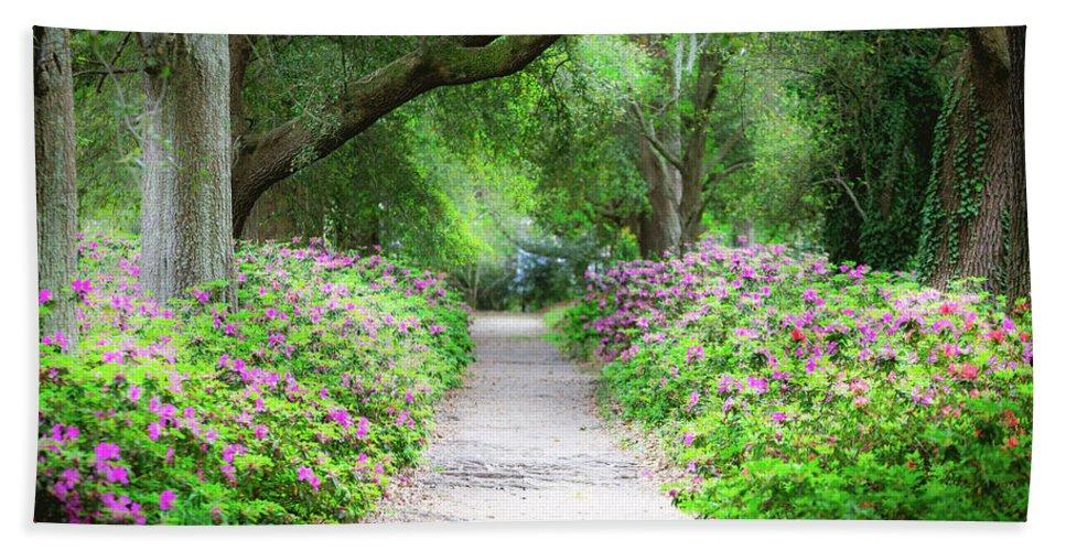 Hampton Park Bath Sheet featuring the photograph Hampton Park Path by Joshua Corrigan