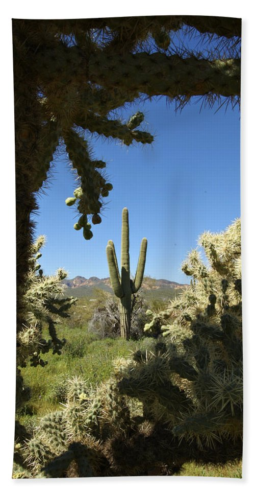 Saguaro Bath Towel featuring the photograph Hands Up You're Surrounded by Jill Reger