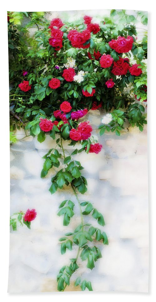Hang Bath Sheet featuring the photograph Hangin Roses by Marilyn Hunt