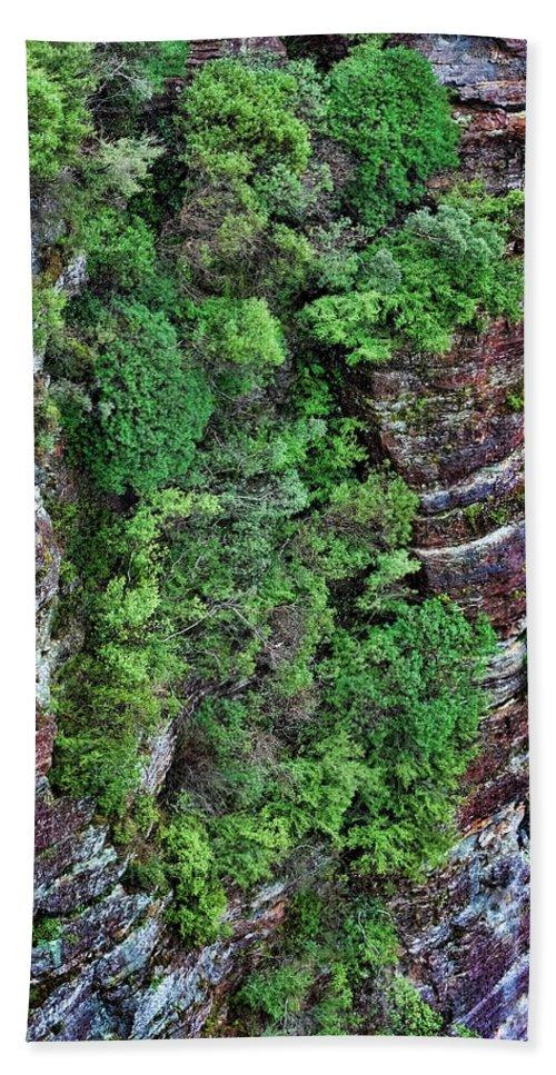 Cliffs Bath Sheet featuring the photograph Hanging Gardens by Douglas Barnard
