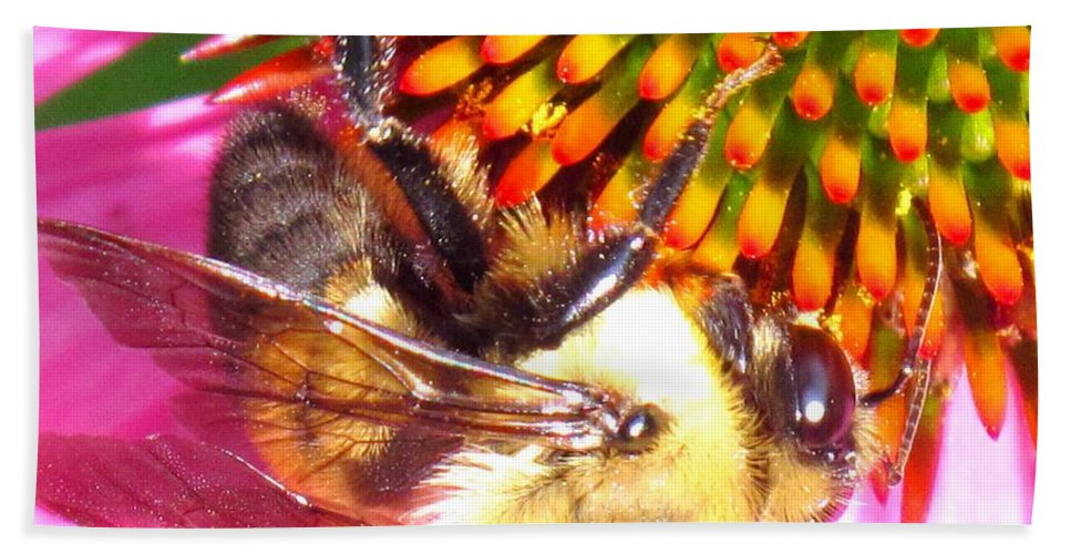 Bee Bath Towel featuring the photograph Hanging In There by Ian MacDonald