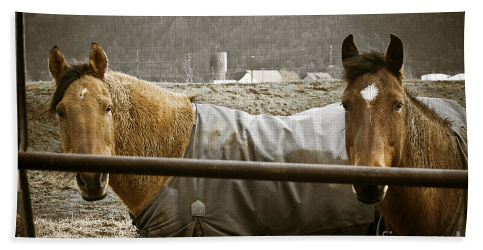 Clay Bath Sheet featuring the photograph Hanging Out by Clayton Bruster