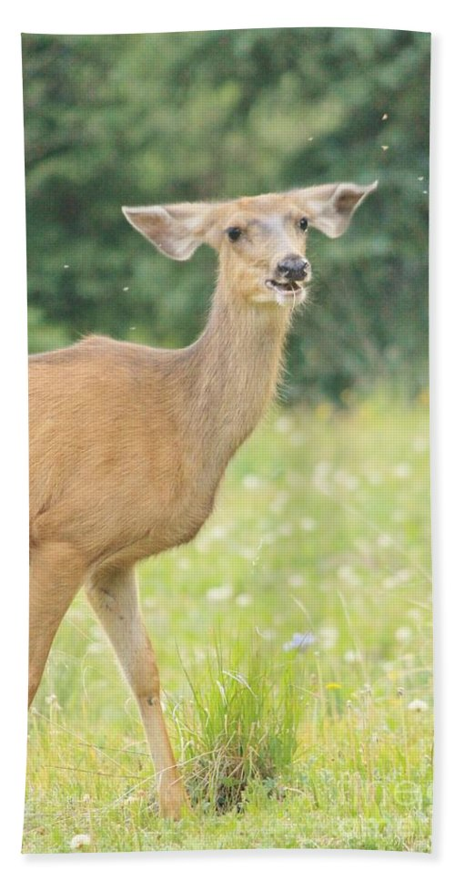 Nature Bath Sheet featuring the photograph Happy Deer by Tonya Hance