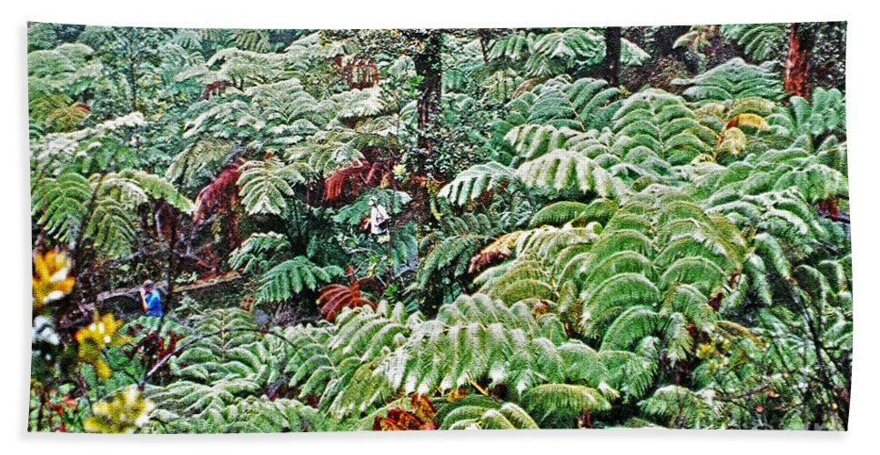 Rainforest Hand Towel featuring the photograph Hapu'u Fern Rainforest by Lydia Holly