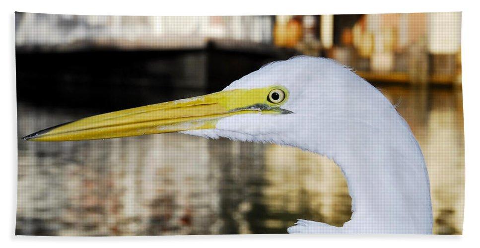 Egret Bath Sheet featuring the photograph Harbor Egret by David Lee Thompson