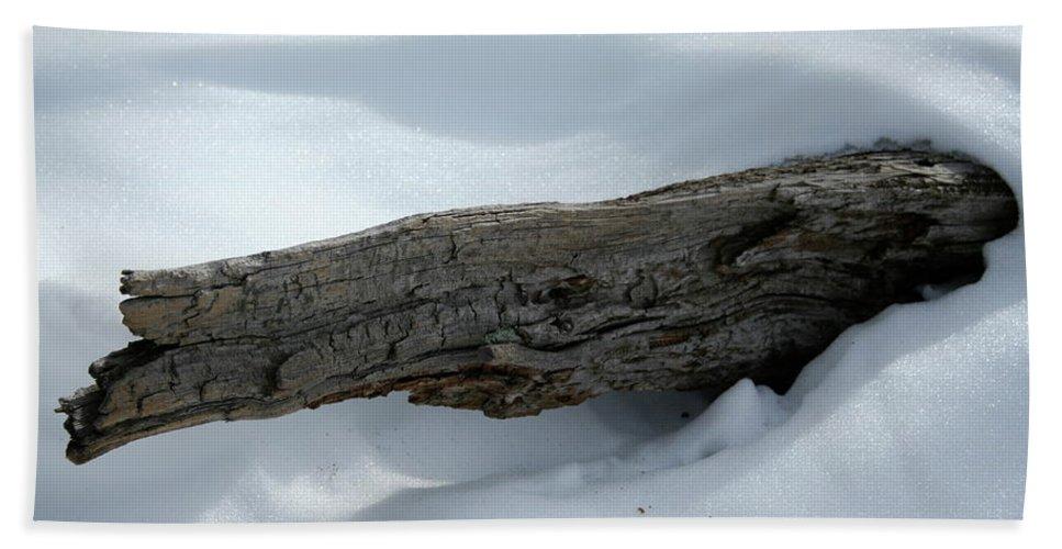 Snow Bath Sheet featuring the photograph Hard Times by Ric Bascobert