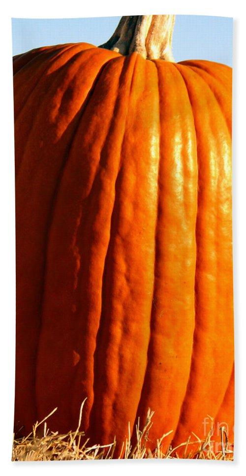 Pumpkin Bath Towel featuring the photograph Harvest by Amanda Barcon