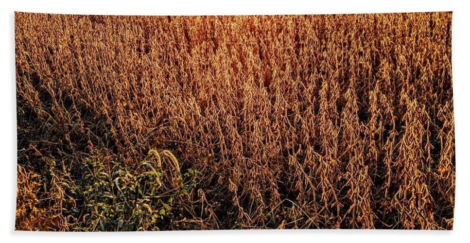 Twilight Bath Sheet featuring the photograph Harvest Twilight by Paul Kercher