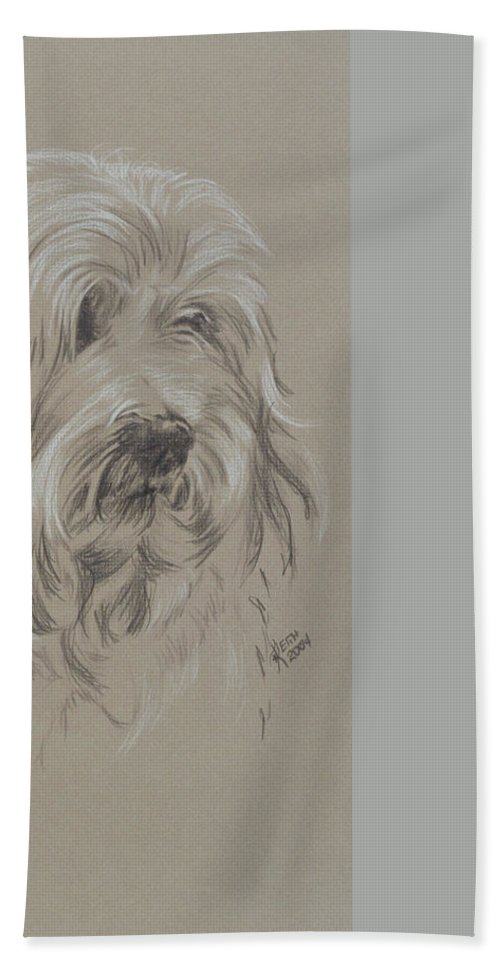 Toy Breed Hand Towel featuring the drawing Havanese by Barbara Keith