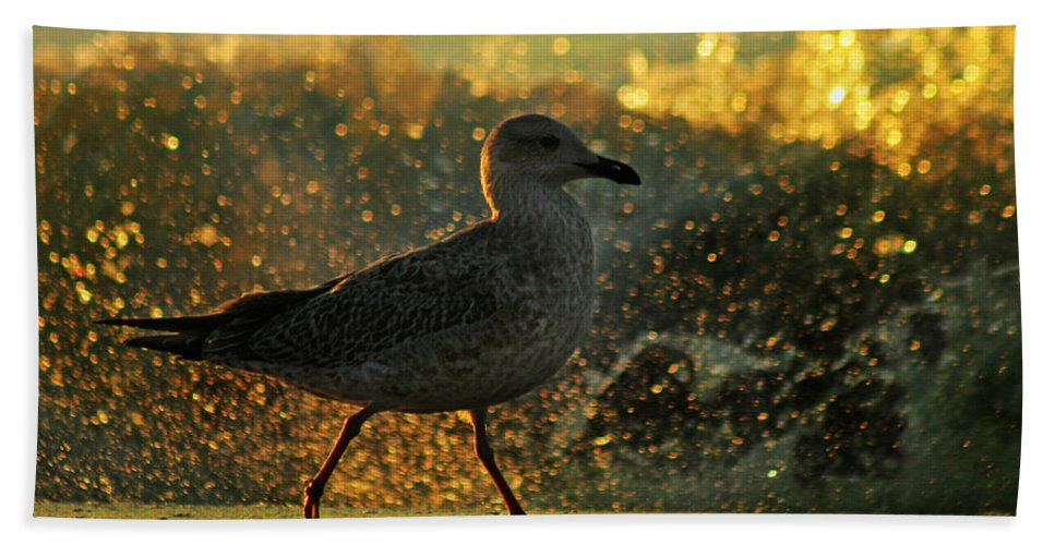 Seagull Hand Towel featuring the photograph Have A Walk By Th Sea by Angel Ciesniarska