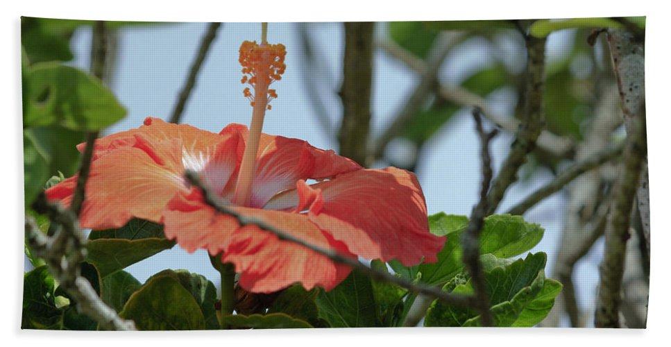 Florals Hand Towel featuring the photograph Hawaiian Beauty by Linda Dunn