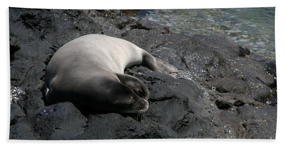 Aloha Hand Towel featuring the photograph Hawaiian Monk Seal Ilio Holo I Ka Uana by Sharon Mau