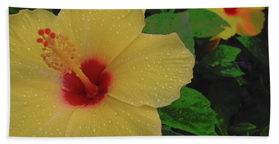 Flower Bath Sheet featuring the photograph Hawaiian Sunrise by JAMART Photography