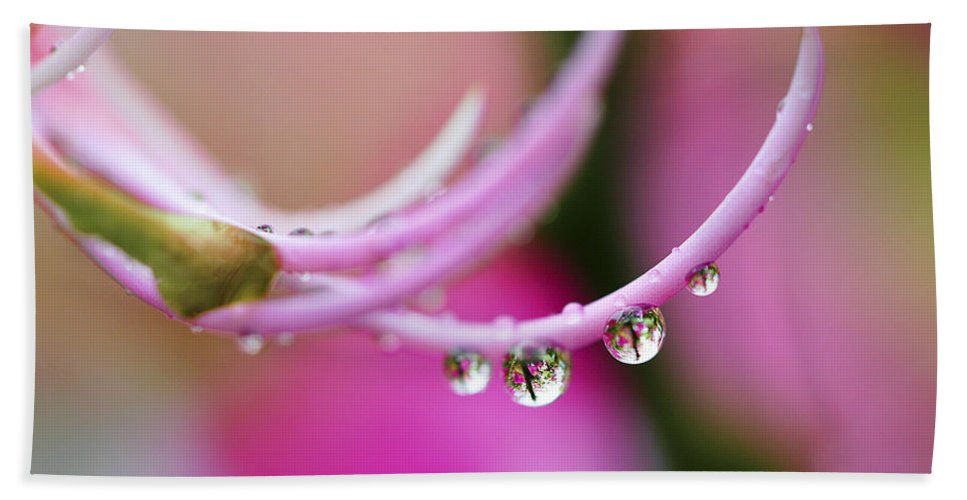 Raindrop Bath Sheet featuring the photograph Hawaiin Rain Drops by Marilyn Hunt
