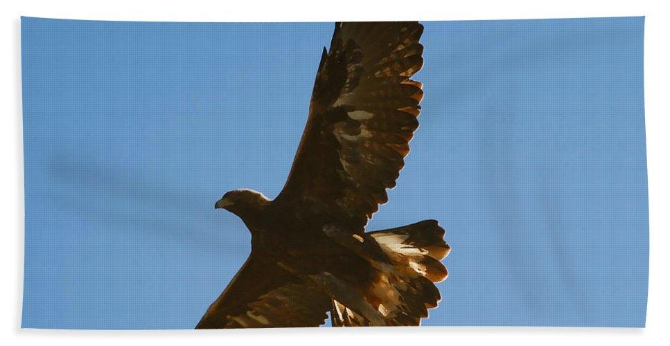 Hawk Bath Sheet featuring the photograph Hawk In Flight by David Lee Thompson