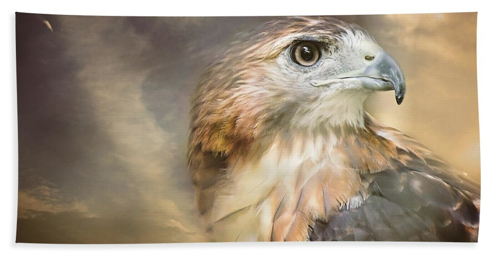 Red Tailed Hawk Hand Towel featuring the photograph Hawkeyed by Heather Applegate