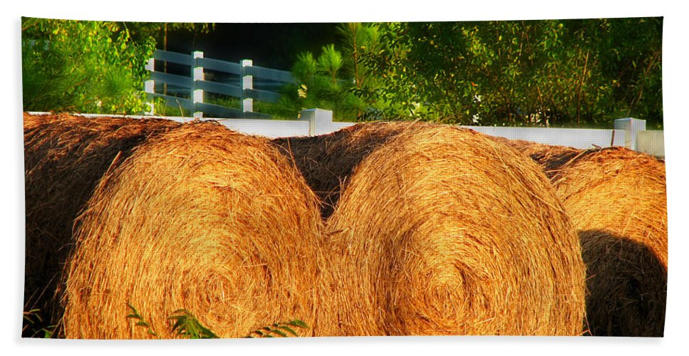 Landscape Bath Sheet featuring the photograph Hay Bales by Todd Blanchard