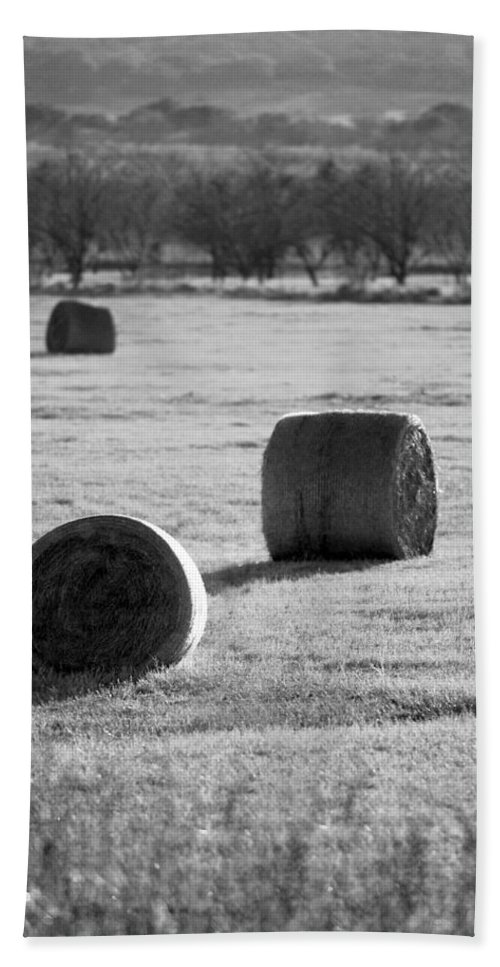Black And White Hand Towel featuring the photograph Hay Is For Horses by Jill Reger