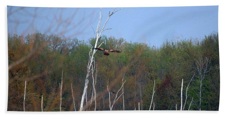 Bald Eagle Bath Towel featuring the photograph Head For The Tree by Linda Kerkau