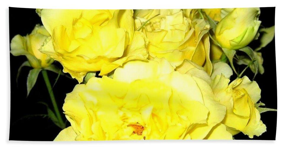 Roses Hand Towel featuring the photograph Heaven Scent by Will Borden