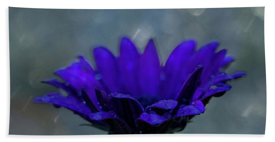 Purple Bath Sheet featuring the photograph Hello Rain by Susan Schmidt