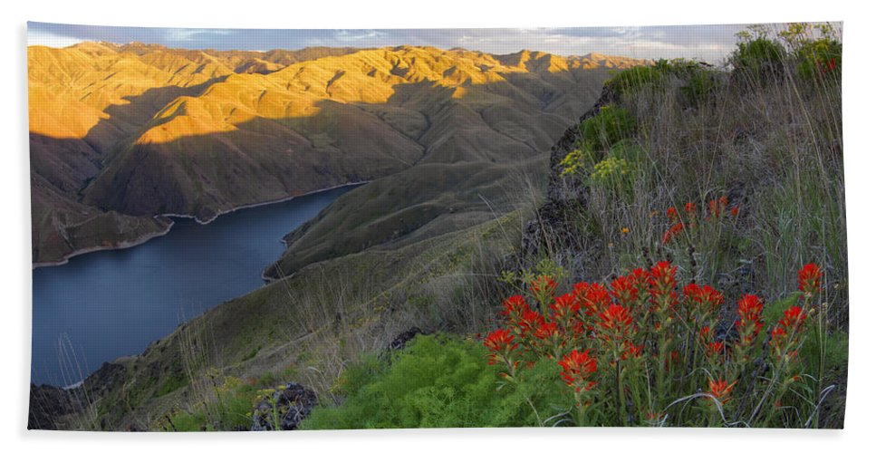 Altitude Bath Sheet featuring the photograph Hells Canyon View by Leland D Howard