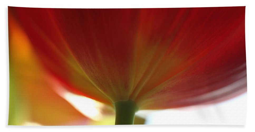 Tulip Bath Sheet featuring the photograph Help Is Here by Amanda Barcon