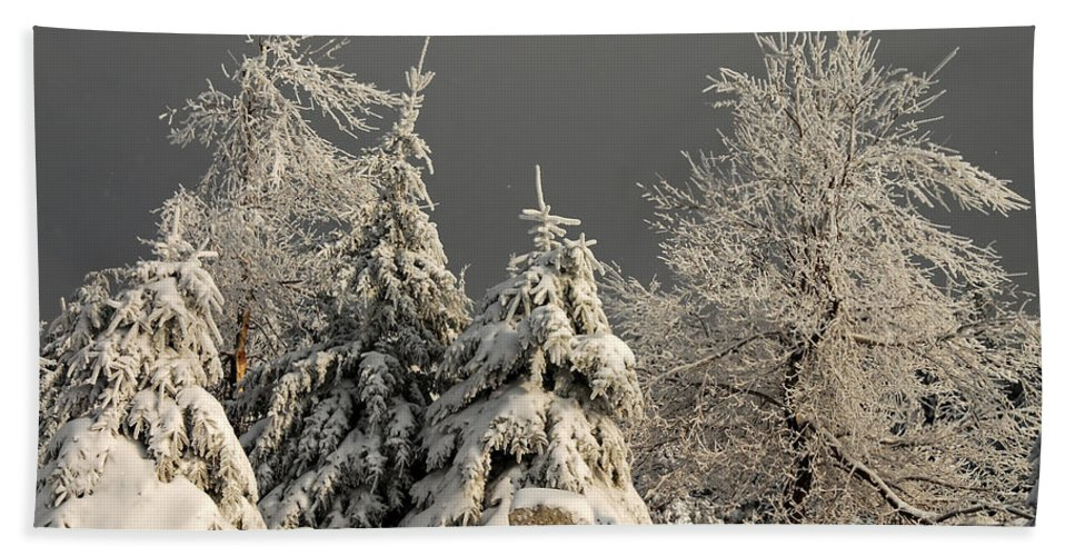 Winter Hand Towel featuring the photograph Here Comes The Sun by Lois Bryan