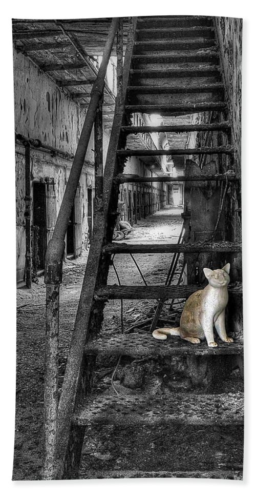 Abandoned Bath Sheet featuring the photograph Here Kitty Kitty Kitty... by Evelina Kremsdorf