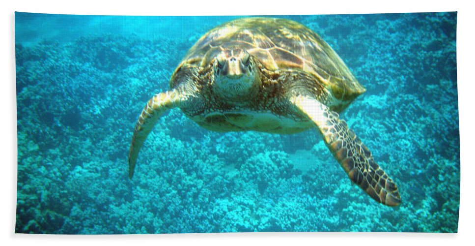 Sea Turtle Hand Towel featuring the photograph Here's Looking At You by Angie Hamlin