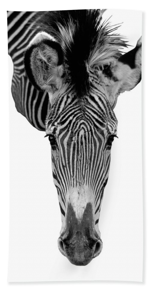 Zebra Bath Sheet featuring the photograph Here's Looking At You by Jerry McElroy