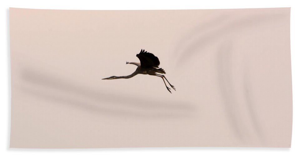 Great Blue Heron Hand Towel featuring the photograph Heron In The Air by Linda Kerkau