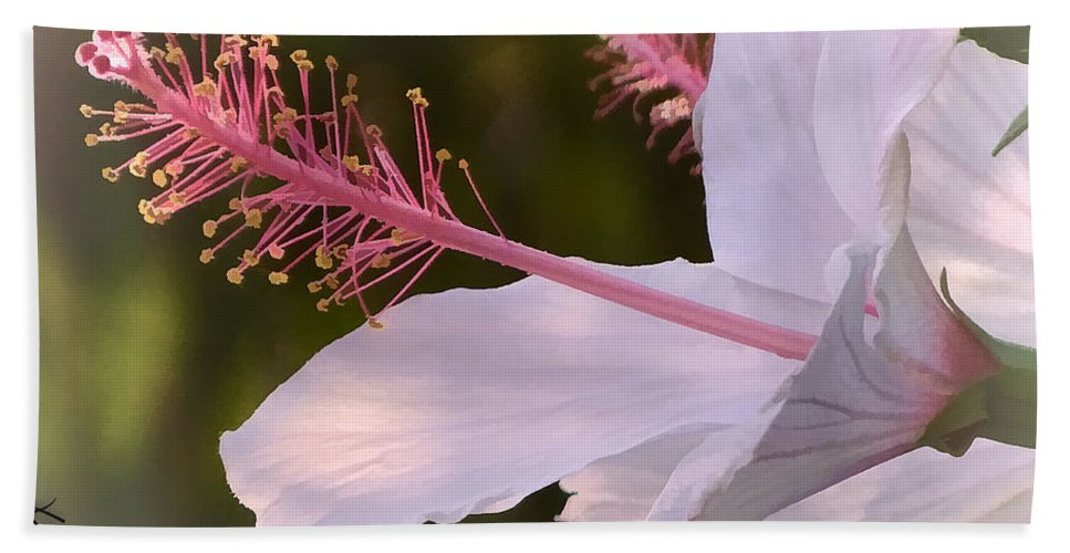 Hibiscus Hand Towel featuring the photograph Hibiscus Bloom Pastel by Margaux Dreamaginations