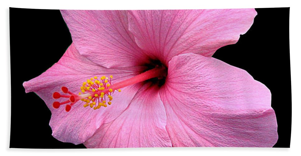 Bath Sheet featuring the photograph Hibiscus On Black by J M Farris Photography