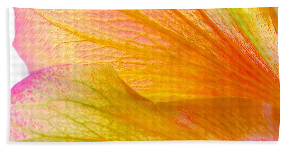 Macro Hand Towel featuring the photograph Hibiscus Petals by Ruth Palmer