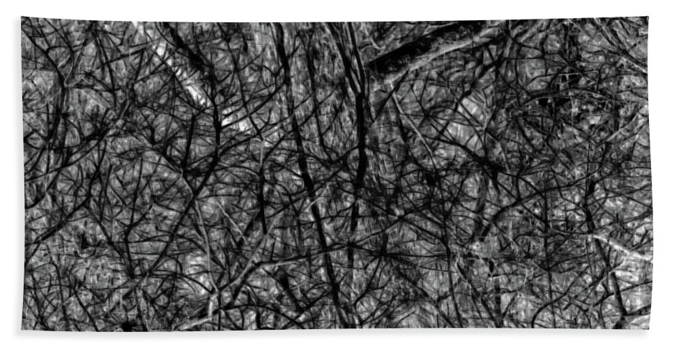 Black And White Photography Hand Towel featuring the photograph Hiding Behind Vines by Gina O'Brien
