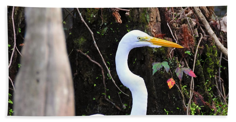 Egret Hand Towel featuring the photograph Hiding Egret by David Lee Thompson