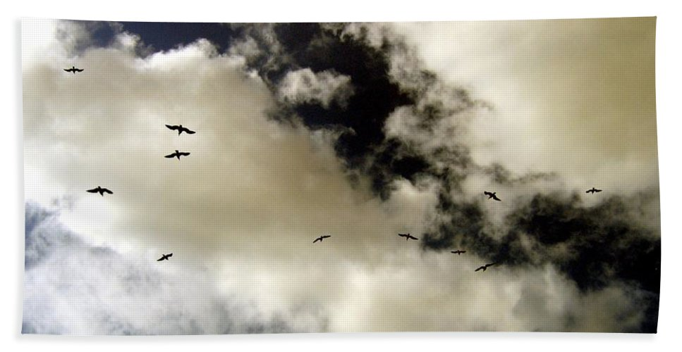 Seagulls Hand Towel featuring the photograph High Flight by Will Borden