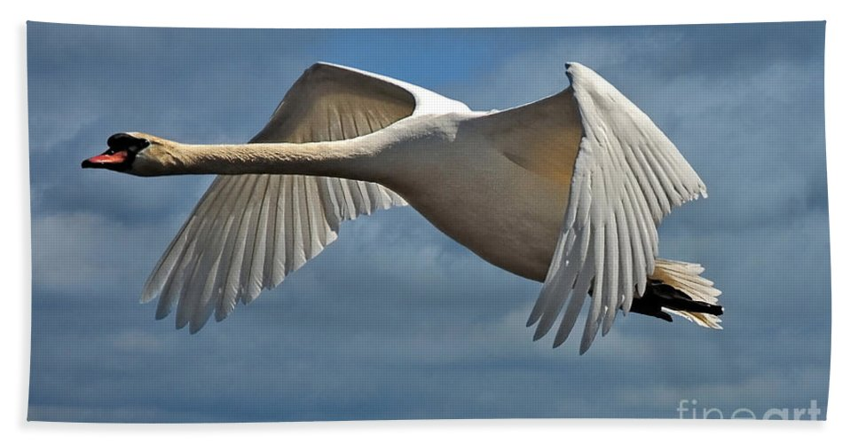 Swan Bath Sheet featuring the photograph High Flying by Lois Bryan