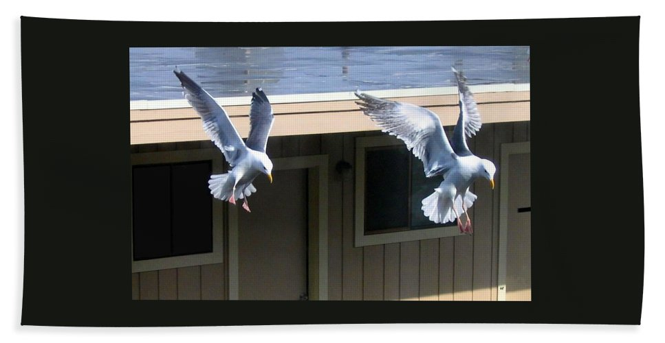 Seagulls Bath Towel featuring the photograph High Spirits by Will Borden