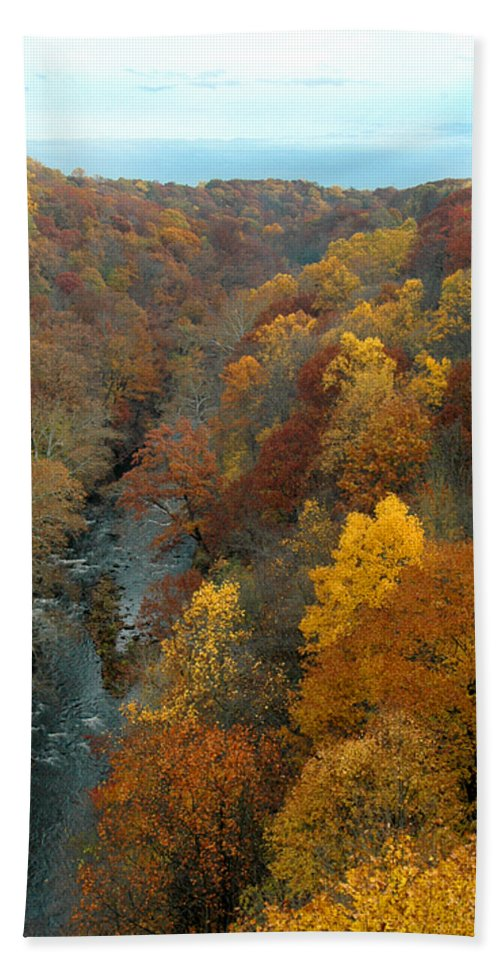 Fall Foliage Hand Towel featuring the photograph Highbridge Highs by Trish Hale