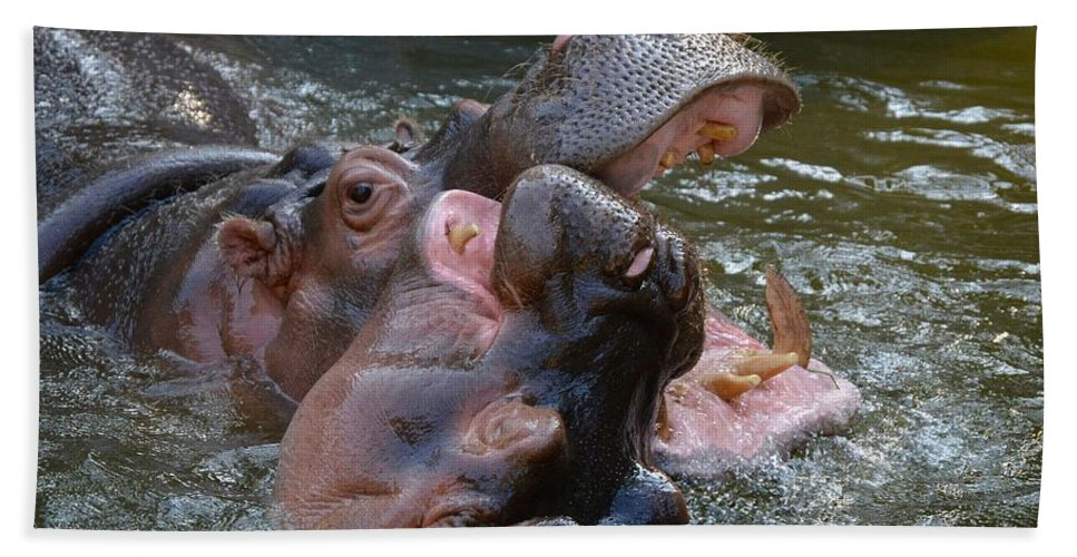 Hippos Hand Towel featuring the photograph Hip Hip Hooray by Jacqueline Howe