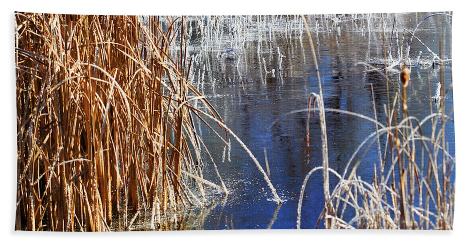 Hoar Frost Hand Towel featuring the photograph Hoar Frost On Reeds by Marilyn Hunt