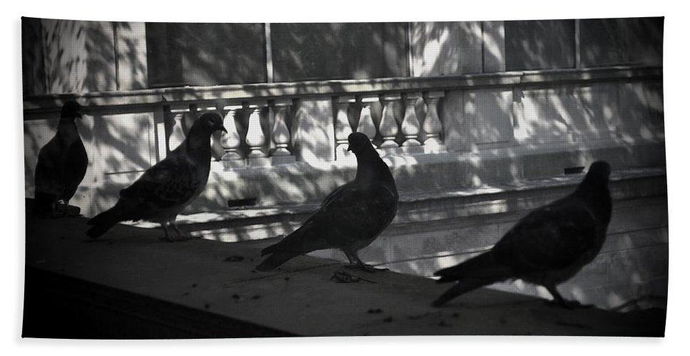 Birds Bath Sheet featuring the photograph Holding Court by Tim Nyberg