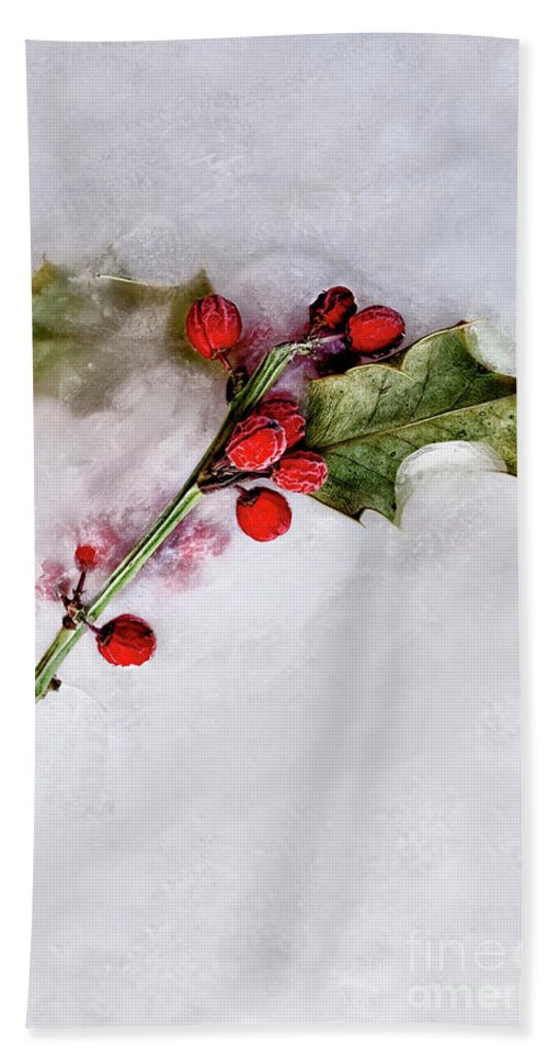 Holly Hand Towel featuring the photograph Holly 4 by Margie Hurwich
