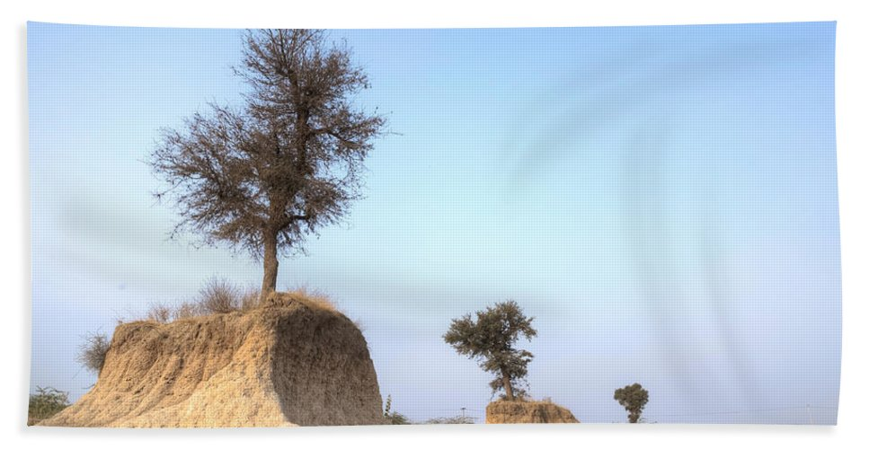 Sand Hand Towel featuring the photograph Holy Trees by Joana Kruse